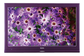 Vestel Color 22FA5100L 56 Ekran Led Tv (22 inç)