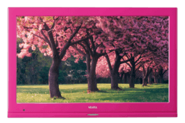 COLOR 22FA5100P LED TV